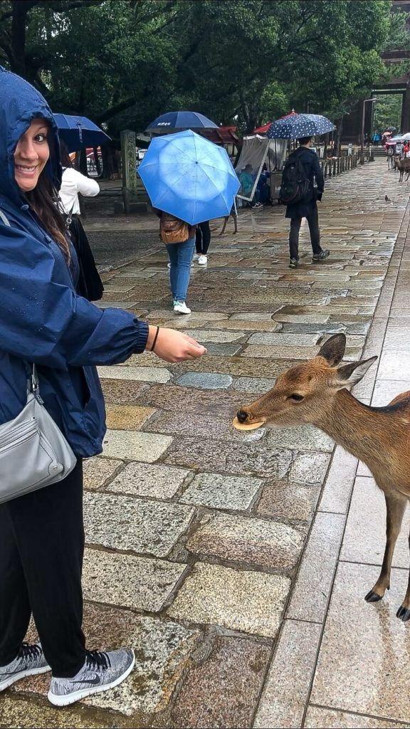 Kristen feeding a small deer with a deer cracker