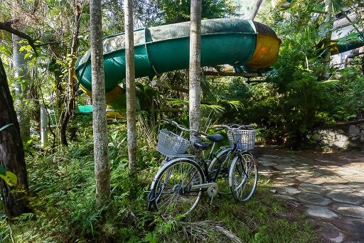 our bikes locked around a tree in front of a spiral green water slide