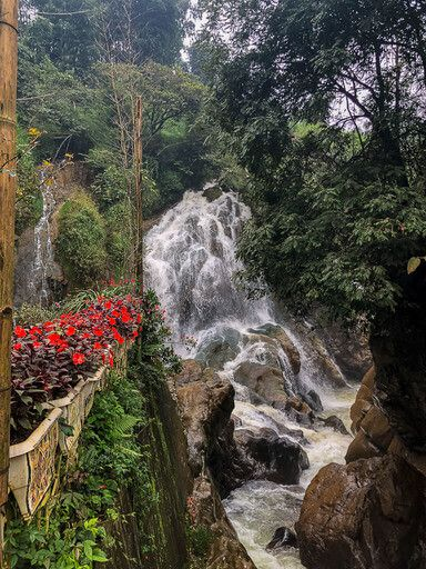 Flowers and waterfall in cat cat village sapa itinerary