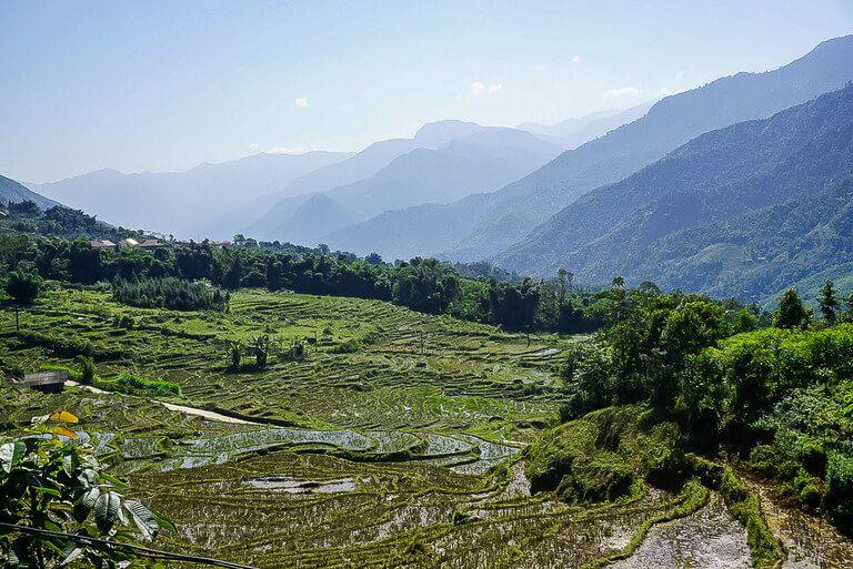 Emerald green Sapa valley waterlogged terraces trekking vietnam