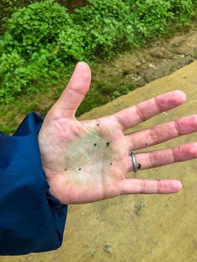Indigo stains on Kristens hand sapa trekking