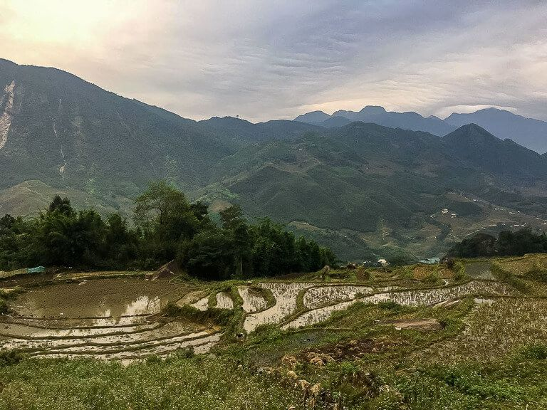 rice paddies October sapa itinerary vietnam