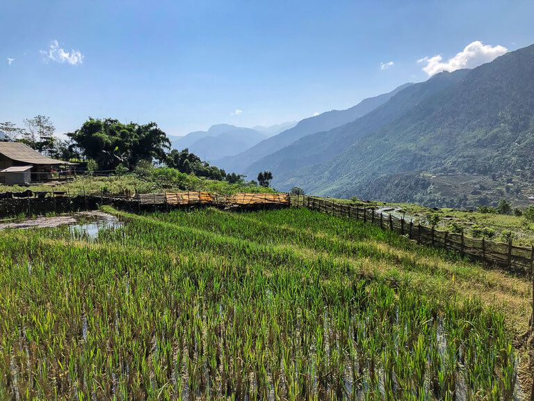 sun shining on green valley trekking sapa vietnam