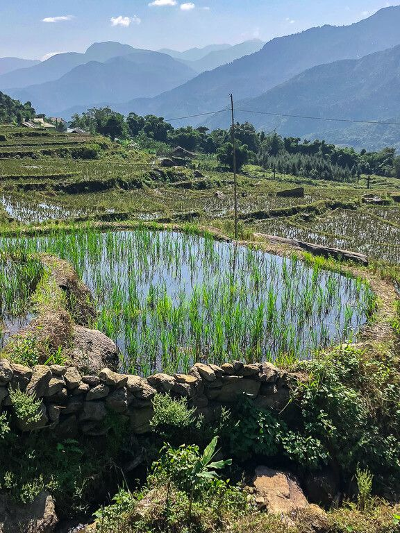 rice terraces in sapa waterlogged heavy rain view of valley sapa itinerary