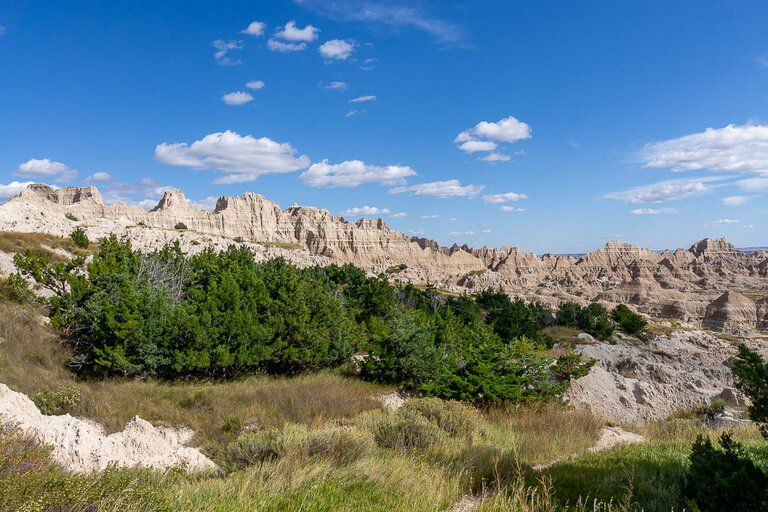 Medicine root trail badlands shrubbery with wall in background