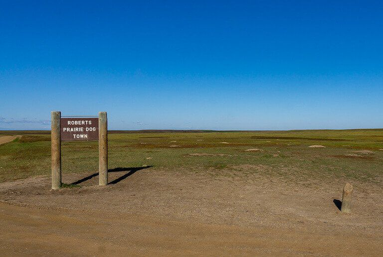 Roberts prairie dog town sign and open field badlands national park