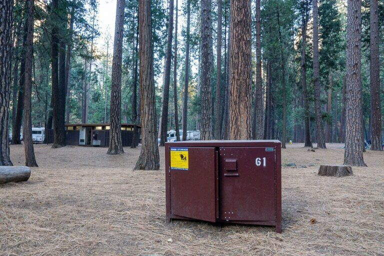 Hiking tips for beginners store food in bear proof containers if necessary and dispose of waste correctly