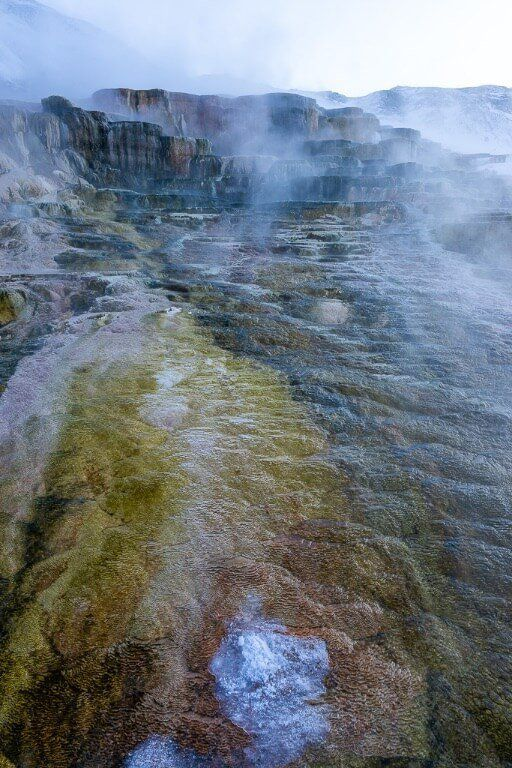 Colorful hot spring Mammoth Yellowstone