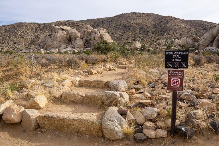 Beginning of hiking trail to Ryan Mountain Joshua Trees best trail