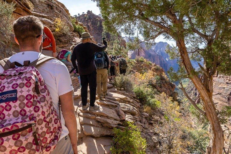 The trail leading to angels landing is very busy for such a narrow path be careful to others passing and not paying attention
