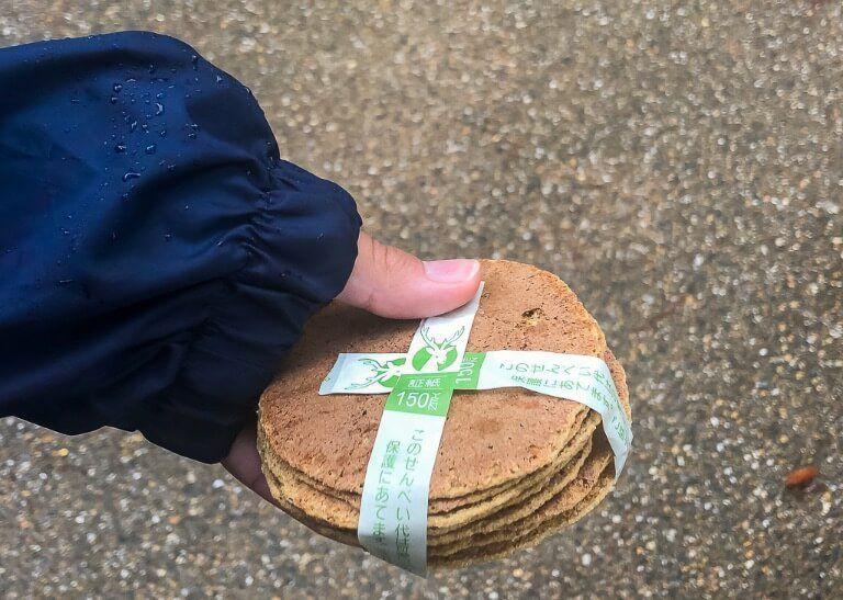 Kristen holding deer crackers to feed the deer at nara deer park Japan
