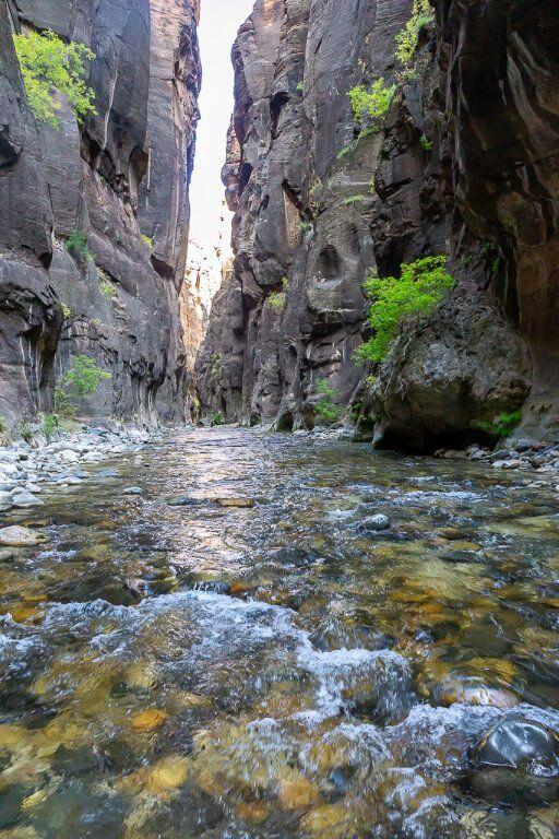 Shallow section of virgin river through the narrows slot canyon