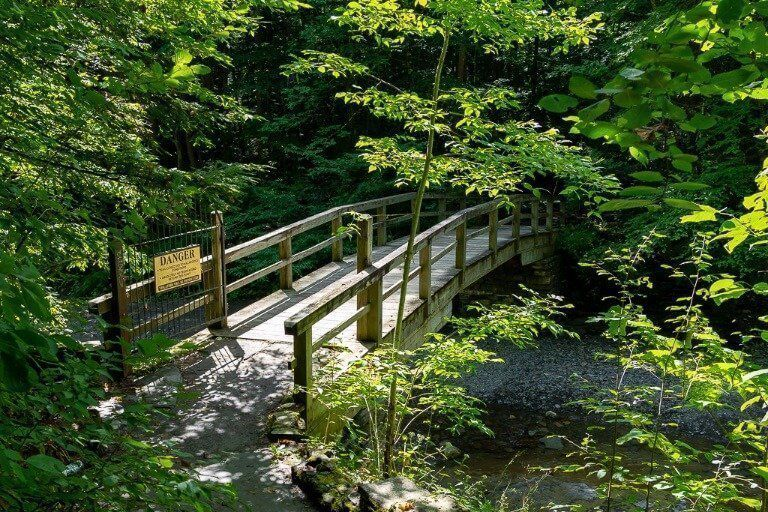 Short loop taking bridge from gorge trail back to north entrance Robert treman state park hiking