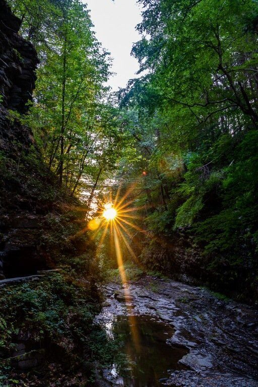 Sunrise is the best time to visit Finger Lakes New York