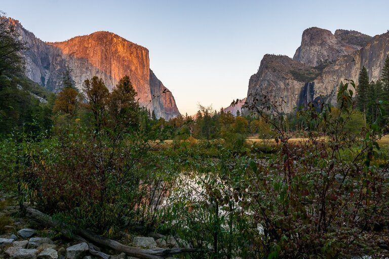 Yosemite photography Valley view el capitan at sunrise behind reeds in shadow
