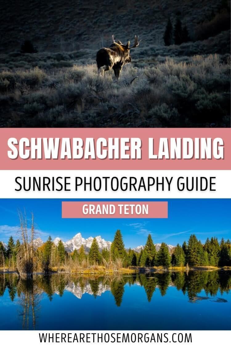 Schwabacher Landing Sunrise Photography Guide Grand Teton