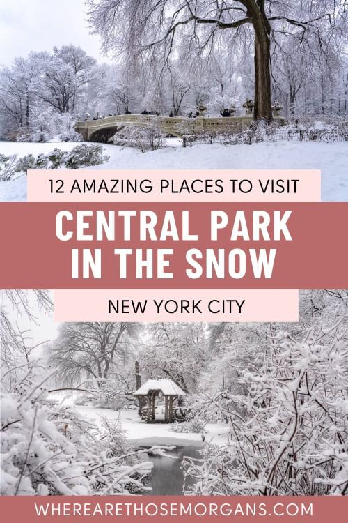 12 amazing places to visit Central Park snow day new york city