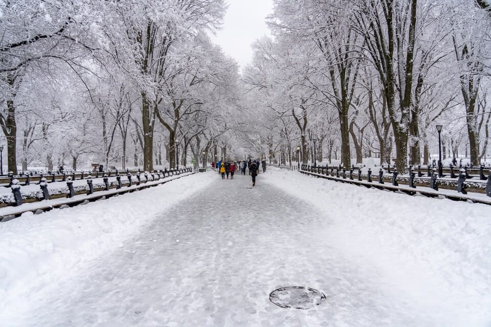 Central Park in Winter the Mall beautiful scenery best hotels near central park neighborhood