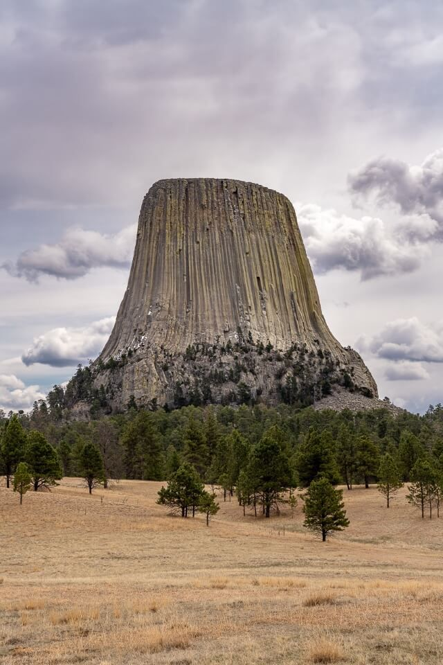Devils Tower National Monument Wyoming bursting into the air with forest and grassland foreground