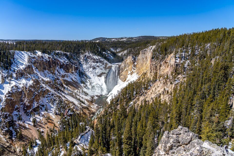 Grand Canyon of the Yellowstone and Lower Falls from Artist Point on a bright blue sunny day