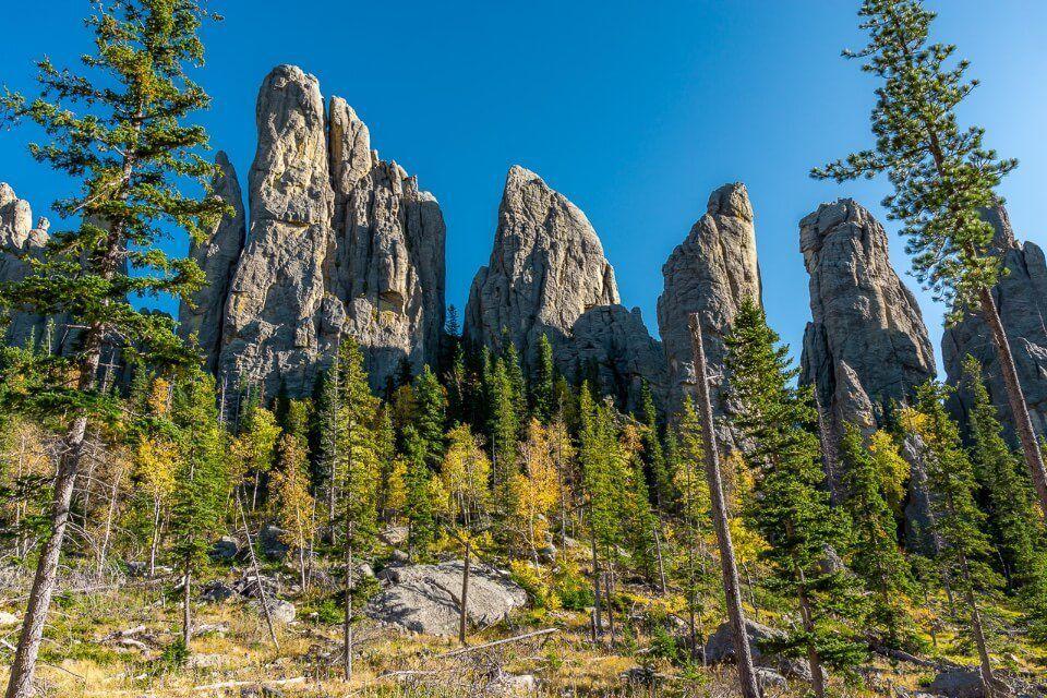 Stunning needle like granite rocks with ponderosa pine trees green and yellow on a south Dakota road trip itinerary