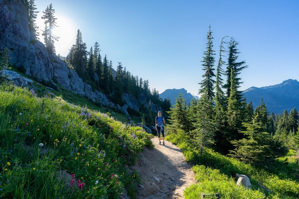 Popular trail in Mt Rainier national park washington