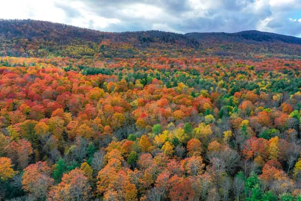 Gorgeous fall colors in autumn in the green mountain best things to do in manchester vt explore countryside