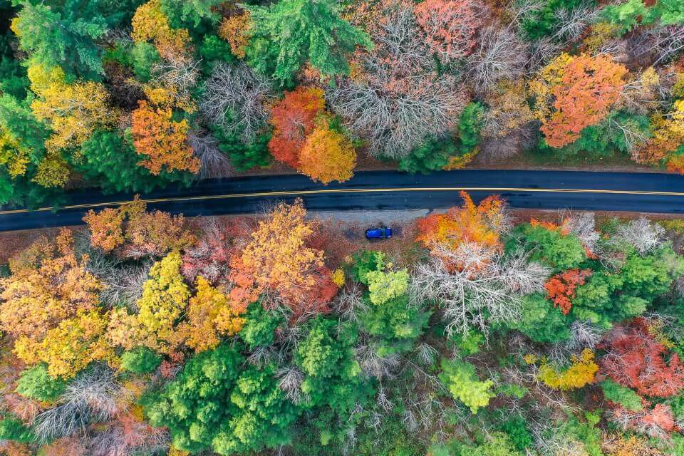 Drone shot of a road near manchester vt in fall from above with stunning colors
