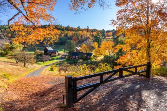 Sleepy Hollow Farm is popular photography location and best things to do in Woodstock VT spectacular colors wooden gate leading two farm with sun illuminating leaves