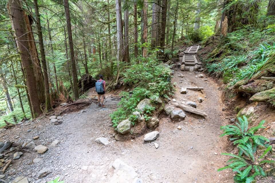 Switchback on the descent from Lake 22 back to the parking lot near granite falls washington awesome forest trail hairpin bend