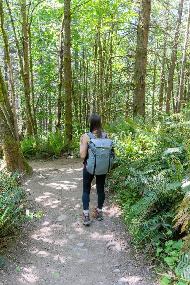 Hiking a path in a forest in washington