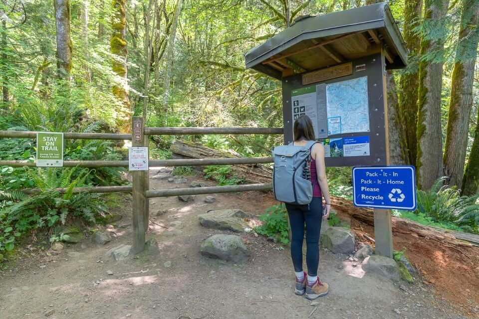 Woman reading hike information on a board at the beginning of a path