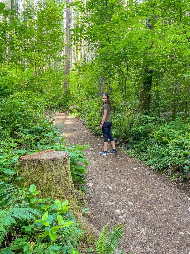Rattlesnake Ledge Trail Washington Woman Hiking Ascending Rattlesnake Ledge Trail Lush Green Leaves