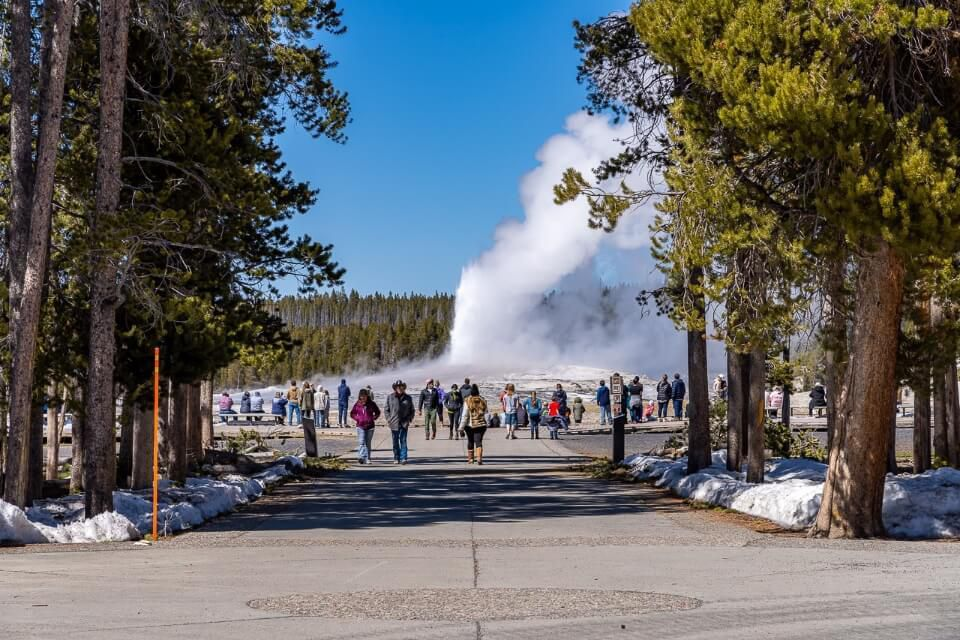 Fewer crowds at yellowstone in april mean visiting old faithful is relaxing