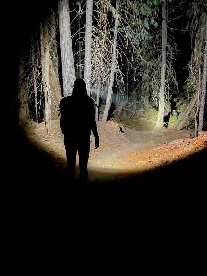 Walking through a dark forest with a head torch