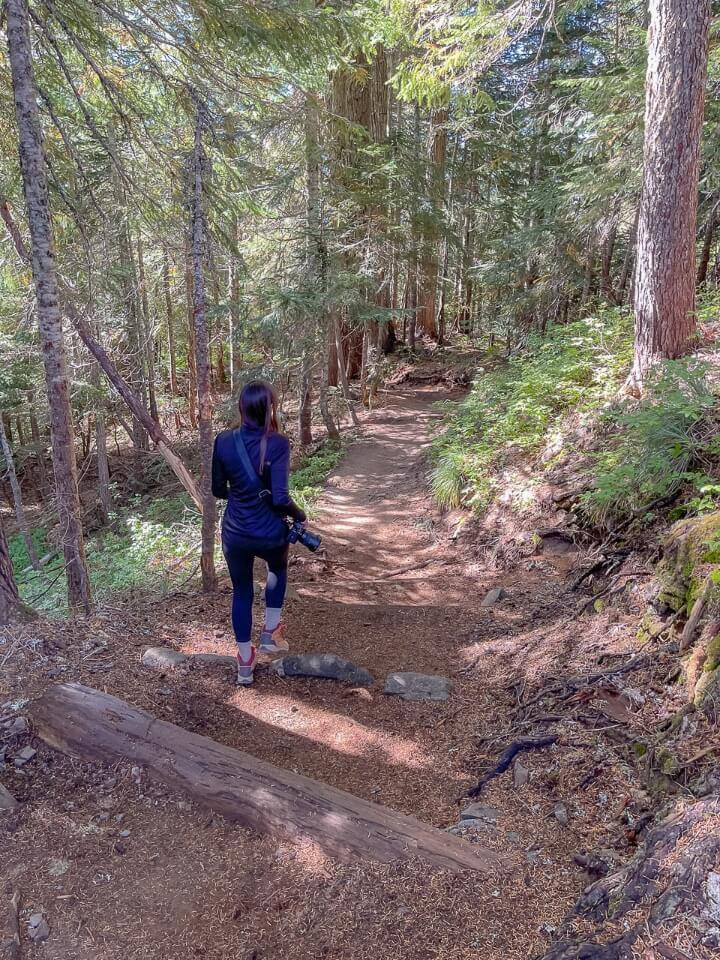Hiking Spray Park Trail in Mt Rainier National Park forest hike